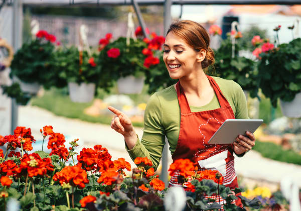 How To Buy For Garden Centres, Smarter Websites